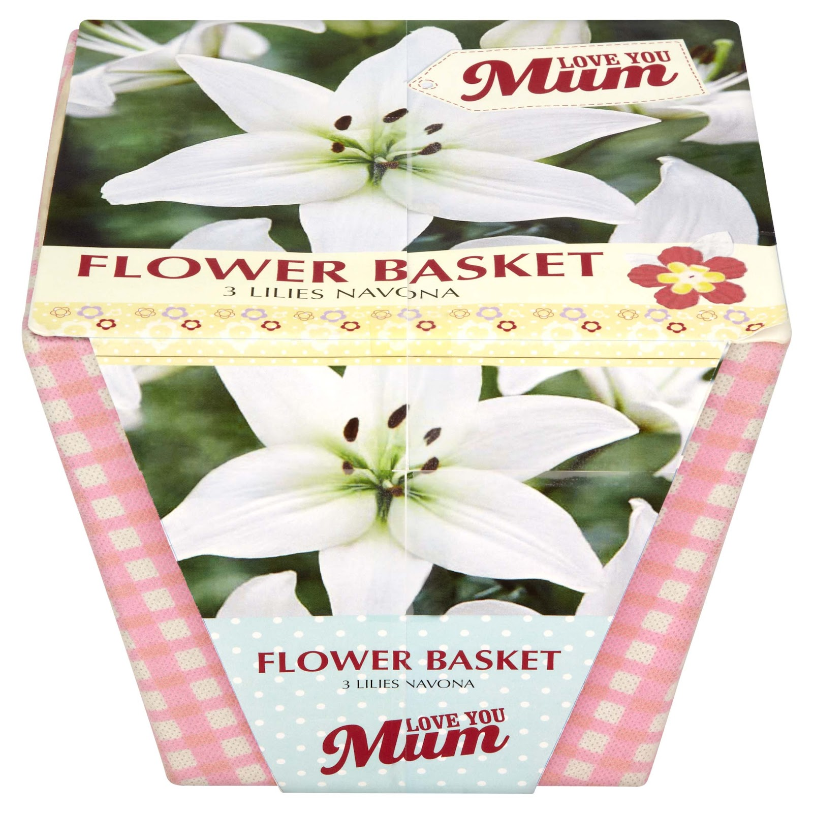 Inside the wendy house mothers day gift ideas from asda grow your own flowers negle Images
