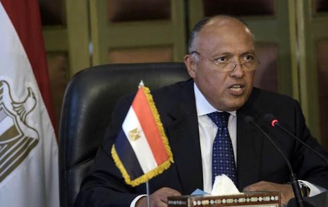 تعليق وزير الخارجية المصري على فكرة إحلال قوات عربية في سوريا ؟