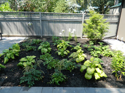 the danforth garden design after by garden muses--not another Toronto gardening blog