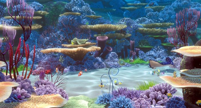 finding nemo coral reef - photo #2