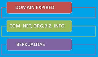 Domain Expired Berkualitas