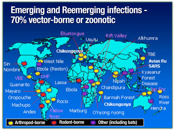 Cold Stones and Hot Zones: India, Emerging Infectious