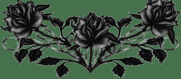 ForgetMeNot: Black Roses
