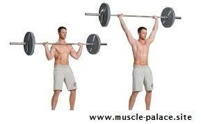 exercise for bigger shoulders