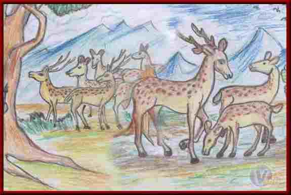 The Story of Khardiya Deer, Jatak Tales In Hindi, खरदीय हिरण के वध की कथा, जातक कथाएँ