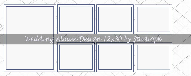 Wedding Album Design 12x30