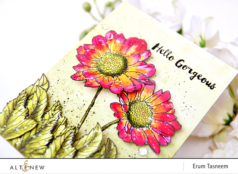 Altenew Spring Daisy Stamp Set + Watercolour Brush Markers | Erum Tasneem | @pr0digy0