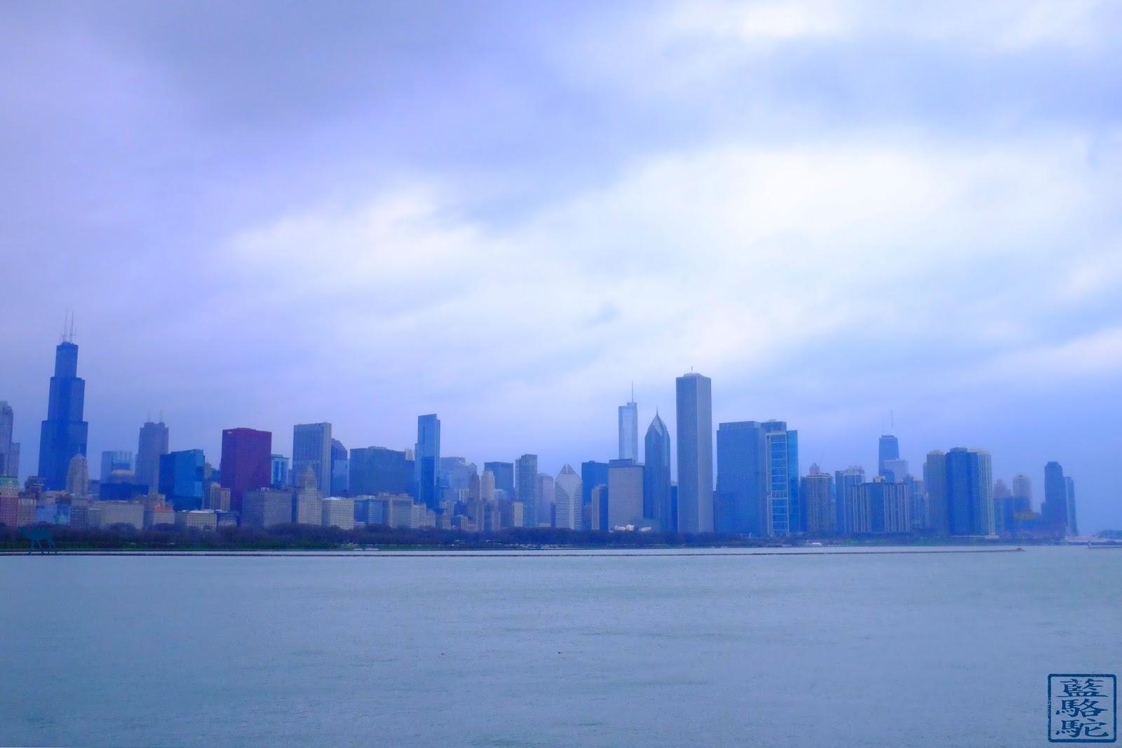 Le Chameau Bleu - Vacances à Chicago - Vue sur la ville