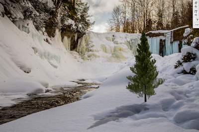 a combination of a real photo mixed with a blender render for the fake tree composited in