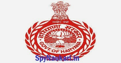 HSSC 2943 Conductor, Driver Recruitment 2017 Apply Online  HSSC 2943 Conductor, Driver Recruitment 2017 Apply Online  result haryana govt 530d93de23978 l