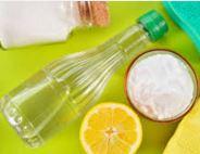 Quelle piccole pesti metodo naturale per divani in tessuto pi puliti con acqua e limone - Pulire divano tessuto bicarbonato ...