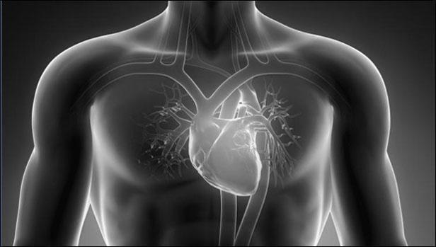 Arti Jantung Berdebar Tanpa Sebab