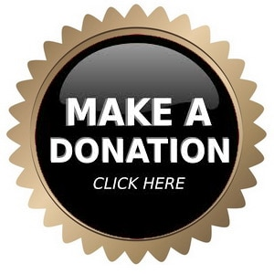 donate to omnibus global foundation