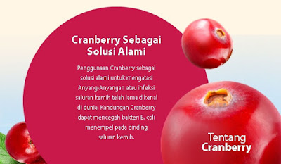 Cranberry solusi alami anyang-anyangan