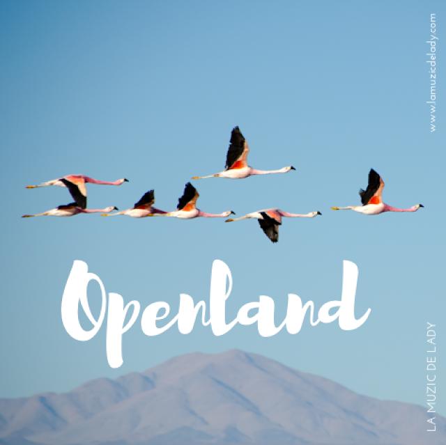 Openland Adam Ben Ezra Blog La Muzic de Lady