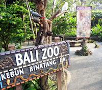 bali-zoo-park-wisata-kebun-binatang-safari-bali-denpasar