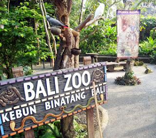 wisata kebun hewan safari bali denpasar Tempat Wisata bali zoo park : wisata kebun hewan safari bali denpasar