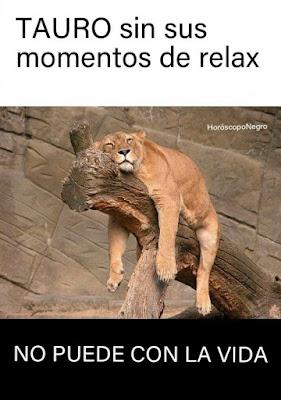 cuando_tauro_se_queda_sin_sus_naps