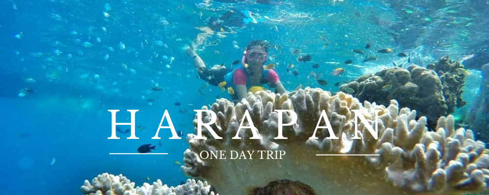 one day trip satu hari di pulau harapan