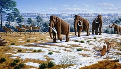 Mammoth Berbulu Prasejarah Melakukan Perjalanan 70.000 km