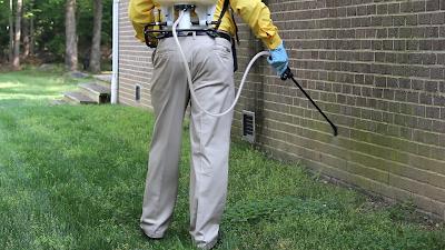 شركة مكافحة حشرات بالدمام وافضل شركات رش المبيدات
