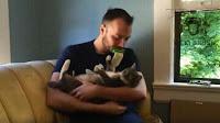 Jilat Kucing Dengan Licki Brush