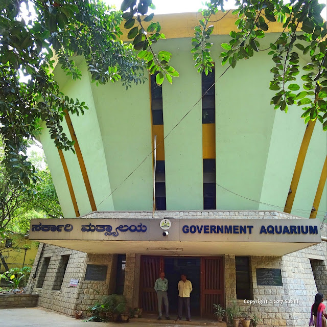 Bangalore Aquarium, Bengaluru is a three Story Building
