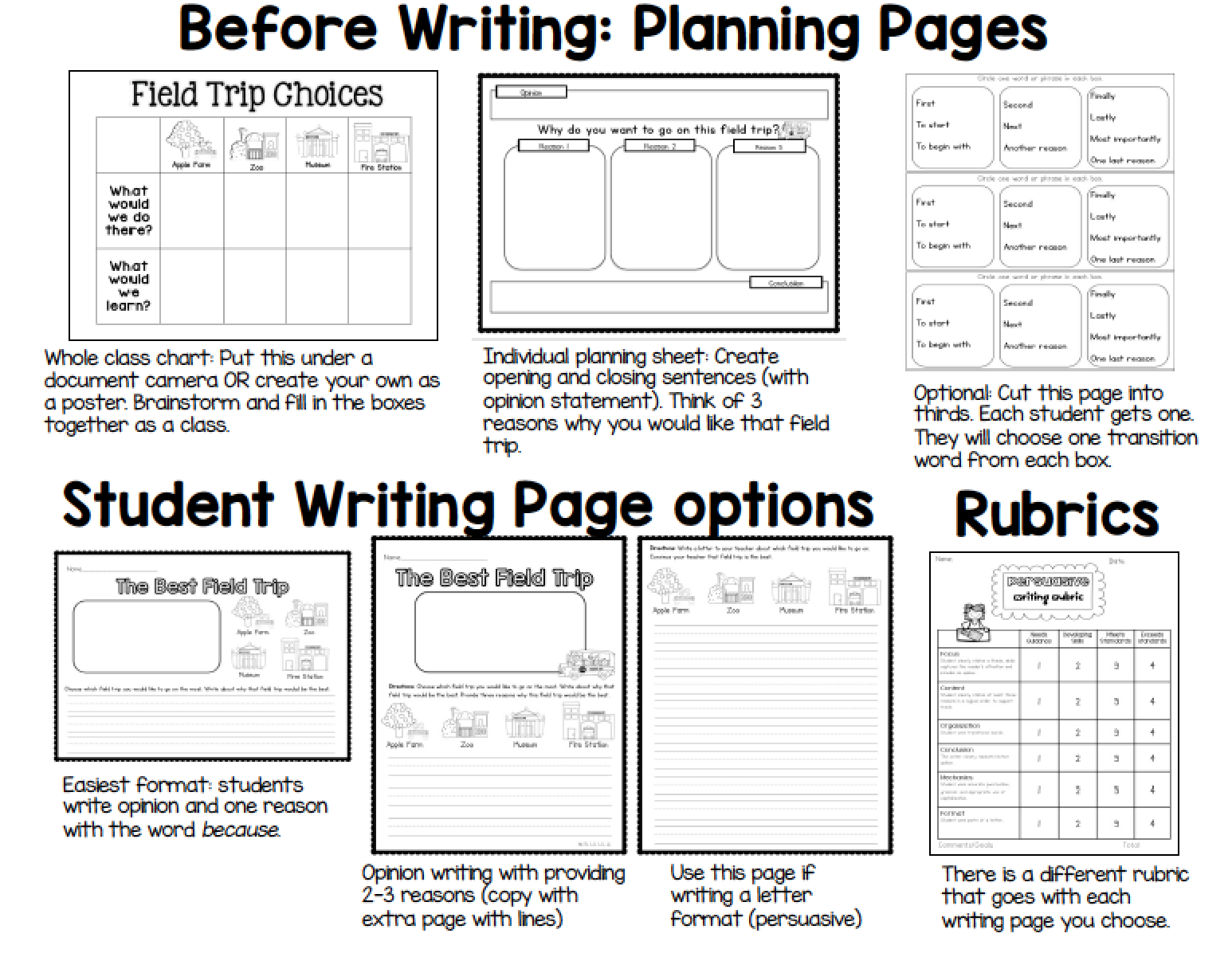 Sarah S First Grade Snippets Opinion Writing Lesson Sample