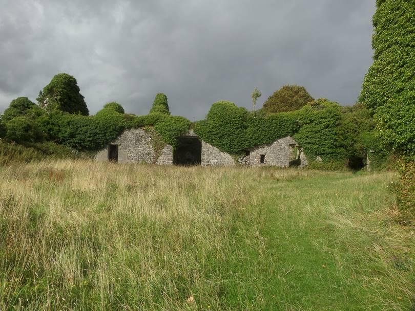 abandoned castles in ireland, castle near galway, castle near galway ireland, menlo castle ireland, menlo castle galway,