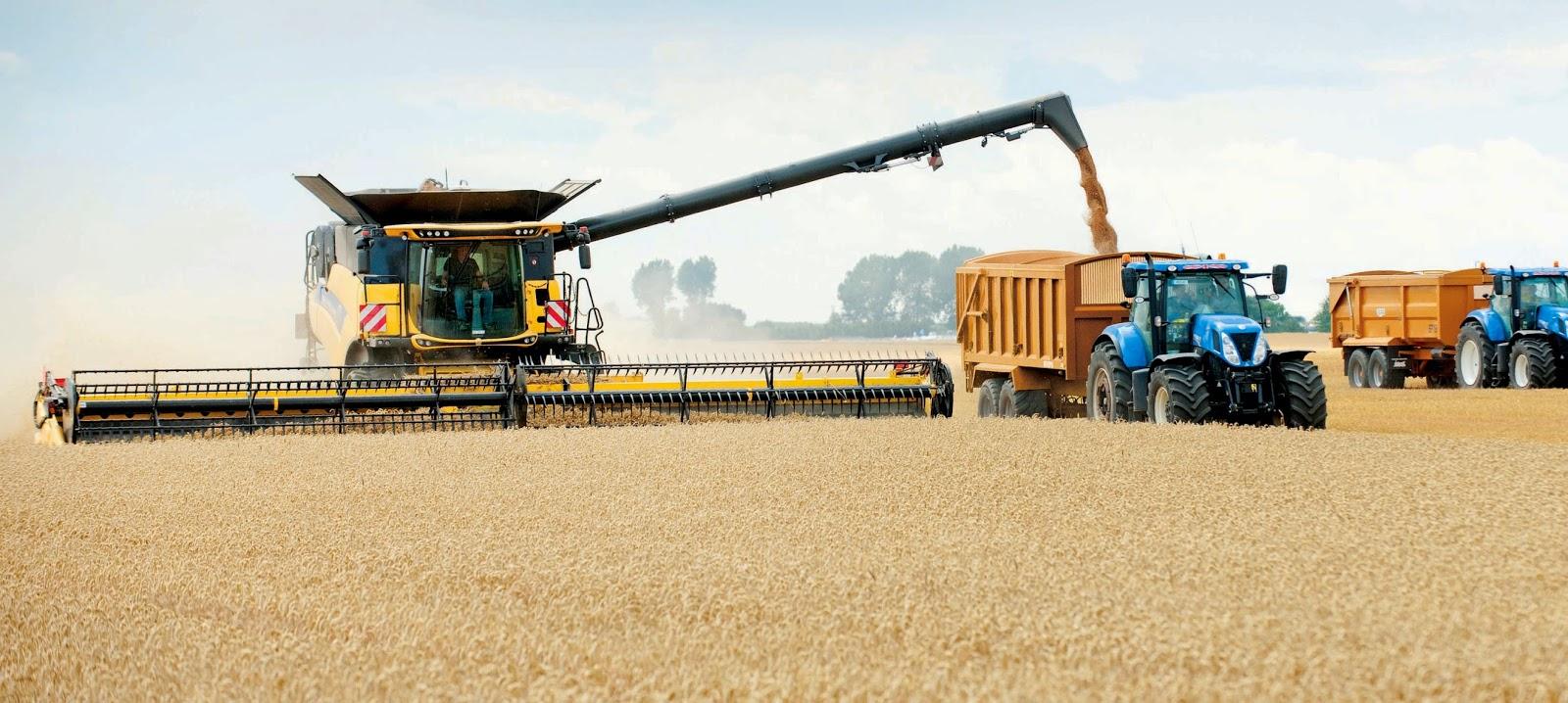 47c7e9d16b New Holland Agriculture ha rivendicato il titolo del GUINNESS WORLD  RECORDS™ essendo riuscita a raccogliere ben 797,656 tonnellate di grano in  otto ore con ...
