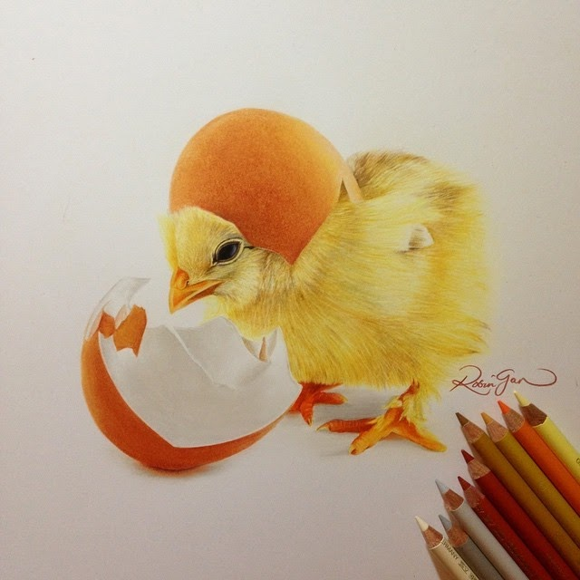 10-Little Chick-Robin-Gan-Realistic-Color-Pencil-Animal-Drawings-www-designstack-co