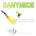 Overwatch: Ganymede