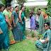 दयानंद गर्ल्स कॉलेज में बीएड विभाग ने कराया वृक्षारोपण