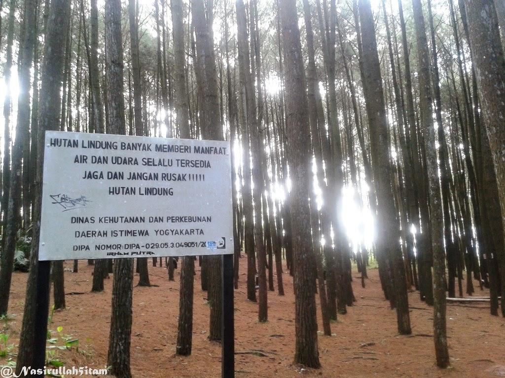 Berbagai rambu-rambu peringatan terpajang di Hutan Pinus, Dlingo
