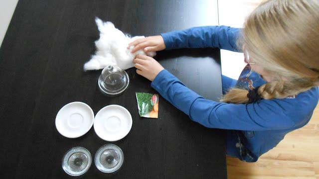 dziecko na warsztat - biologia pod baczą obserwacją - Czytaj dalej »