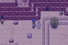 pokemon wish screenshot 7
