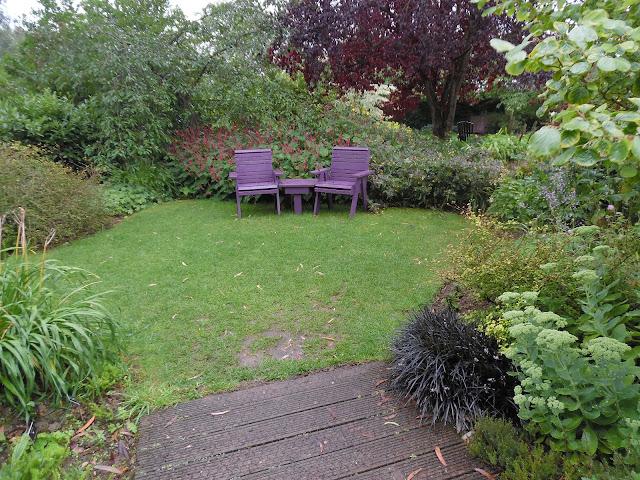 First Time Garden