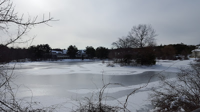 Spruce Pond, not far from the house is cold this morning