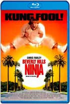 Un ninja en Beverly Hills (1997) HD 720p Latino