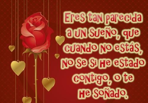 Tierna imagen de rosa con frases de amor