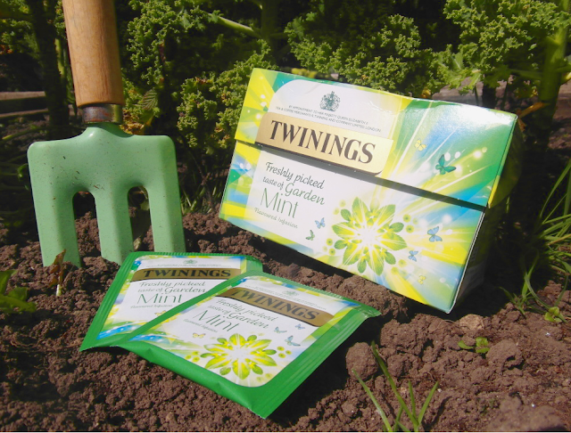 Freshly picked taste of Garden Mint, Twinings