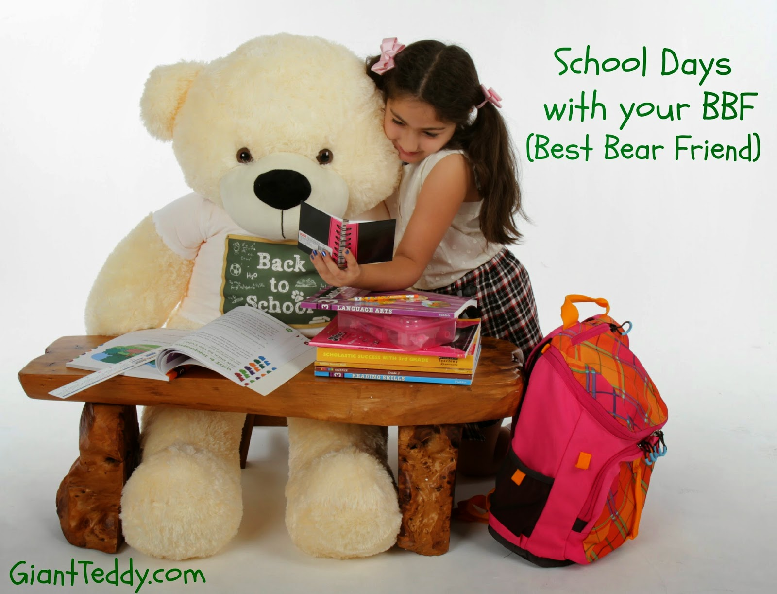 school and college at Giant Teddy