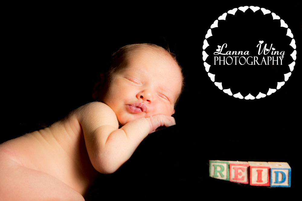 www.lannawingphotography.com