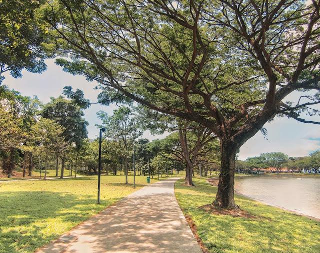 East coast lagoon food village, singapore trees