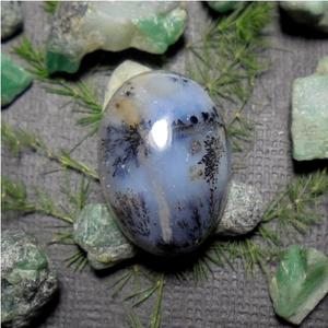Mustika Geliga Landak Laut