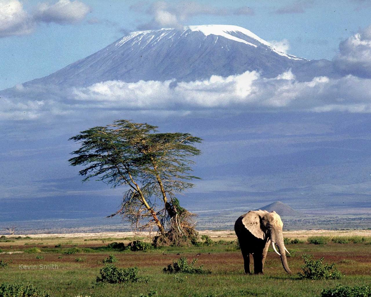 10 Top-Rated Tourist Attractions in Tanzania – SafariBookings  Tanzania Famous Places