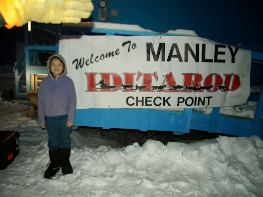 Iditarod 2015 Manley Hot Springs Checkpoint