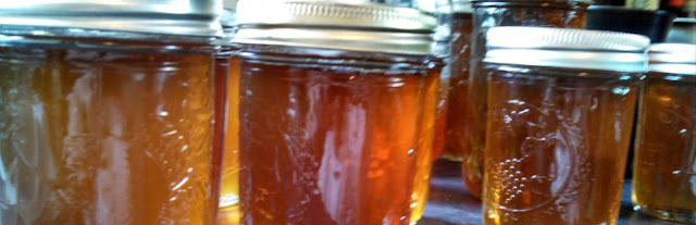 using honey to make home brew