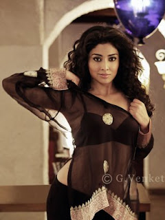 Shriya in Allari Naresh Movie