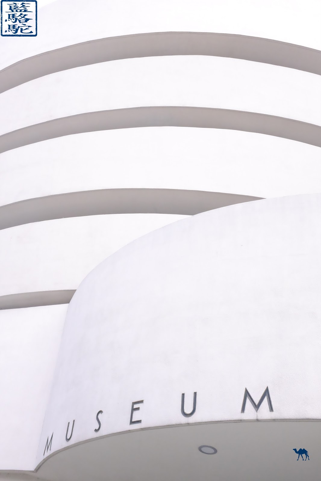 Le Chameau Bleu - Balade à New York - Architecture du Musée Guggenheim